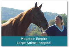 Mountain Empire Large Animal Hospital