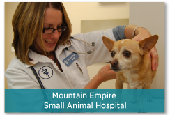 Mountain Empire Small Animal Hospital